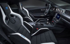 2019 Ford Shelby release date